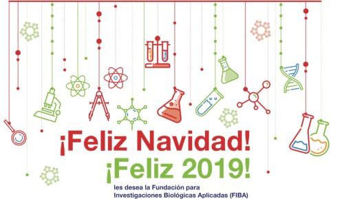Navidad 2018 - Año Nuevo 2019